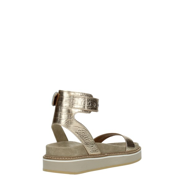 Janet Sport Shoes Women Wedge Sandals Platinum 45761